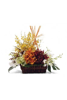 Tropical Orchids Basket